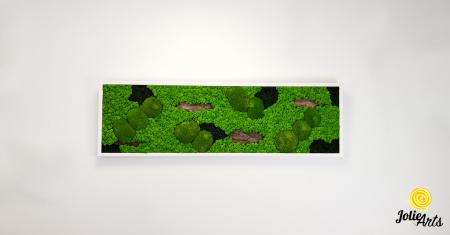 Tablou cu licheni, muschi si elemente naturale stabilizate, Model Scoarta [2]