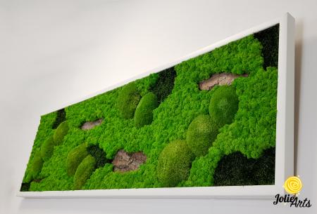 Tablou cu licheni, muschi si elemente naturale stabilizate, Model Scoarta [5]