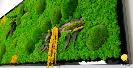 Tablou cu licheni, muschi si plante naturale stabilizate, Jolie Arts, model personalizat [5]