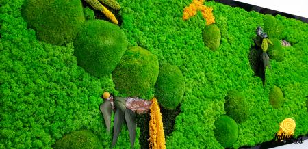 Tablou cu licheni, muschi si plante naturale stabilizate, Jolie Arts, model personalizat [6]