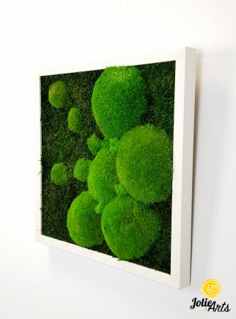 Tablou muschi plati, muschi bombati si licheni naturali stabilizati Jolie Arts. [2]