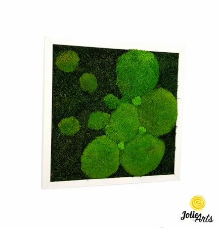 Tablou muschi plati, muschi bombati si licheni naturali stabilizati Jolie Arts. [5]