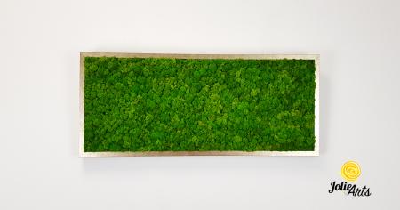 Tablou licheni, culoare Light Green [1]