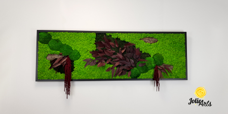 Tablou licheni, muschi si plante naturale stabilizate, Model Amaranthus Rosu, 30 x 70 cm, rama neagra, Jolie Arts, www.tablouriculicheni.ro-2 [2]