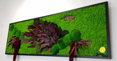 Tablou licheni, muschi si plante naturale stabilizate, Model Amaranthus Rosu, 30 x 70 cm, rama neagra, Jolie Arts, www.tablouriculicheni.ro-2 [4]