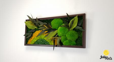 Model Soare, tablou licheni, muschi si plante naturale stabilizate, 30 x 70 cm, rama de culoare maro inchis, Jolie Arts, www.tablouriculicheni.ro-2 [2]
