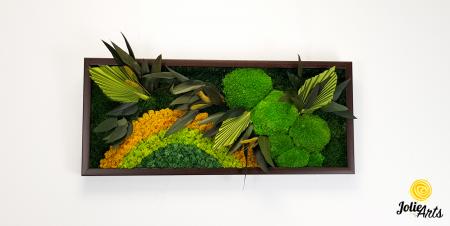 Model Soare, tablou licheni, muschi si plante naturale stabilizate, 30 x 70 cm, rama de culoare maro inchis, Jolie Arts, www.tablouriculicheni.ro-2 [1]