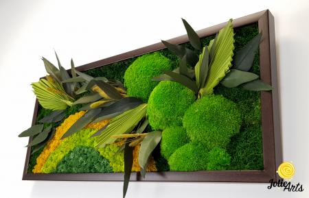 Model Soare, tablou licheni, muschi si plante naturale stabilizate, 30 x 70 cm, rama de culoare maro inchis, Jolie Arts, www.tablouriculicheni.ro-2 [5]