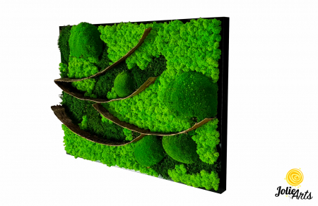 Tablou licheni, muschi bombati si elemente naturale stabilizate Jolie Arts, dimensiune 50 x 70 cm [0]