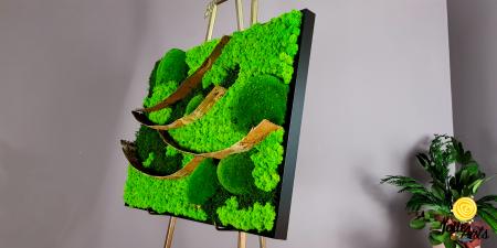 Tablou licheni, muschi bombati si elemente naturale stabilizate Jolie Arts, dimensiune 50 x 70 cm [3]