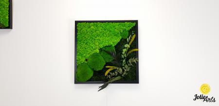 Tablou licheni, muschi bombati si plante naturale stabilizate Jolie Arts, Model Clarice [4]