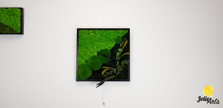 Tablou licheni, muschi bombati si plante naturale stabilizate Jolie Arts, Model Clarice [1]