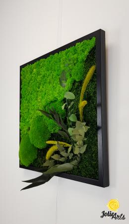 Tablou licheni, muschi bombati si plante naturale stabilizate Jolie Arts, Model Clarice [3]