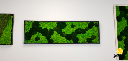 Tablou licheni, muschi bombati verde inchis, Jolie Arts [4]