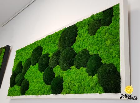 Tablou licheni, muschi naturali de padure stabilizati verde inchis, Jolie Arts [3]