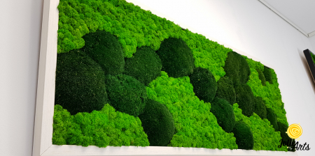 Tablou licheni, muschi naturali de padure stabilizati verde inchis, Jolie Arts [4]