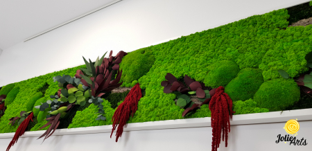 Tablou licheni, muschi si plante naturale stabilizate, Jolie Arts, Model Amaranthus Rosu [4]