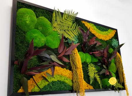 Tablou licheni, muschi si plante naturale stabilizate Jolie Arts, Model Curcubeu Galben [4]