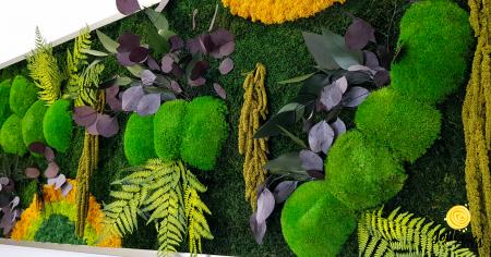 Tablou licheni, muschi si plante naturale stabilizate, Model Curcubeu cu galben, dimensiune 60 x 180, Jolie Arts, www.tablouriculicheni.ro-3 [4]