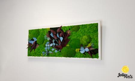 Tablou licheni, muschi si plante naturale stabilizate Jolie Arts, model Ilona [5]