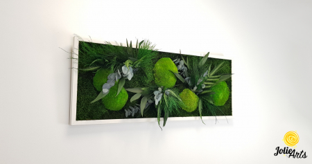 Tablou licheni, muschi si plante naturale stabilizate, model Green Day, Jolie Arts [3]