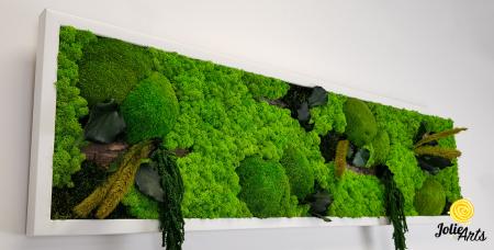 Tablou licheni, muschi si plante naturale stabilizate, Model Green Amaranthus, rama alba, dimensiune 25 x 100 cm, Jolie Arts, www.tablouriculicheni.ro-2 [3]
