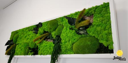Tablou licheni, muschi si plante naturale stabilizate, Model Green Amaranthus, rama alba, dimensiune 25 x 100 cm, Jolie Arts, www.tablouriculicheni.ro-2 [4]