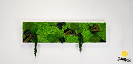 Tablou licheni, muschi si plante naturale stabilizate, Model Green Amaranthus, rama alba, dimensiune 25 x 100 cm, Jolie Arts, www.tablouriculicheni.ro-2 [2]
