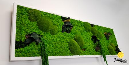 Tablou licheni, muschi si plante naturale stabilizate, Model Green Amaranthus, rama alba, dimensiune 25 x 100 cm, Jolie Arts, www.tablouriculicheni.ro-2 [6]