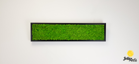 Tablou licheni naturali stabilizati, culoare verde deschis, 25 x 100 cm, Jolie Arts, www.tablouriculicheni.ro-3 [2]