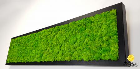 Tablou licheni naturali stabilizati, culoare verde deschis, 25 x 100 cm, Jolie Arts, www.tablouriculicheni.ro-3 [4]