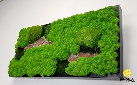 Tablou licheni naturali, muschi bombati, Jolie Arts, Model Scoarta [5]