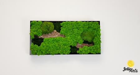 Tablou licheni naturali, muschi bombati, Jolie Arts, Model Scoarta [2]