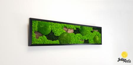 Model Scoarta: muschi de padure, scoarta pin si licheni stabilizati. [3]