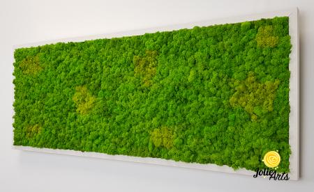 Tablou licheni naturali stabilizati, culoare Grass Green Light cu insertii de Spring [5]