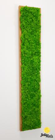 Tablou cu licheni naturali stabilizati, culoare Grass Green Light [6]