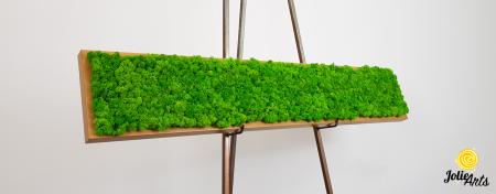 Tablou cu licheni naturali stabilizati, culoare Grass Green Light [5]