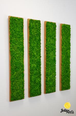 Set 4 tablouri decorate cu licheni naturali stabilizati, 25 x 100 cm [4]