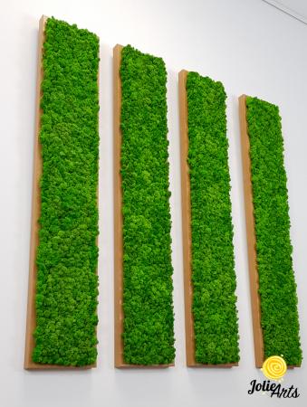 Set 4 tablouri decorate cu licheni naturali stabilizati, 25 x 100 cm [1]