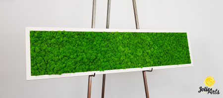 Tablou licheni naturali stabilizati, culoare verde deschis, rama argintie 20 X 80 cm, Jolie Arts, www.tablouriculicheni.ro-2 [6]