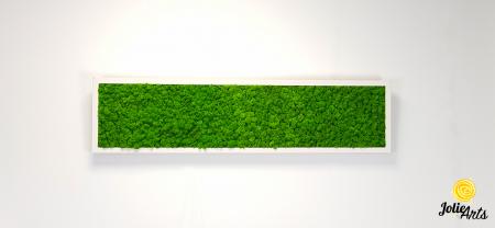 Tablou licheni naturali stabilizati, culoare verde deschis, rama argintie 20 X 80 cm, Jolie Arts, www.tablouriculicheni.ro-2 [2]