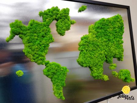 Tablou licheni naturali stabilizati, harta lumii, Joie Arts, dimensiune 60 x 90 cm [3]