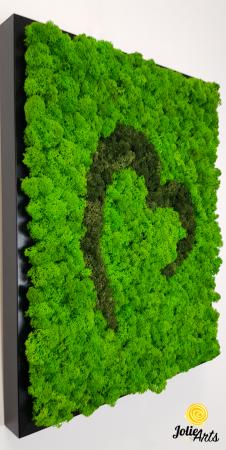 Tablou licheni naturali stabilizati Jolie Arts, model inima stilizata, doua nuante de verde [3]