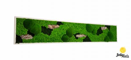 Tablou licheni naturali stabilizati, muschi bombati de padure si elemente naturale stabilizate. [0]