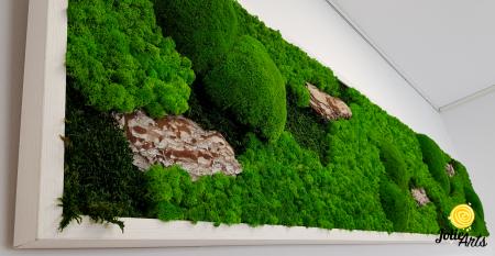 Tablou licheni naturali stabilizati, muschi bombati de padure si elemente naturale stabilizate. [4]