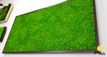 Tablou licheni naturali stabilizati, Jolie Arts, www.tablouriculicheni.ro-3 [5]