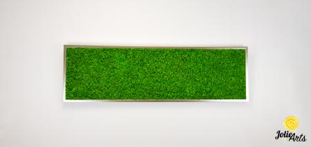 Tablou licheni naturali stabilizati, culoare verde deschis, 40 x 130 cm, Jolie Arts, www.tablouriculicheni.ro-2 [2]