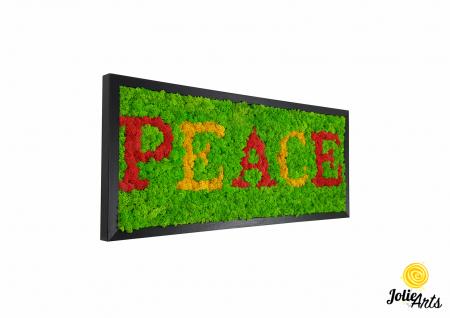 Tablou mesaj, logo personalizat cu licheni naturali stabilizati, dimensiune 30 x 70 cm [0]