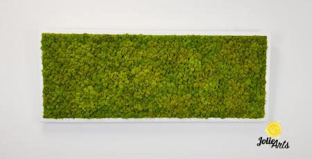 Verde Spring [2]
