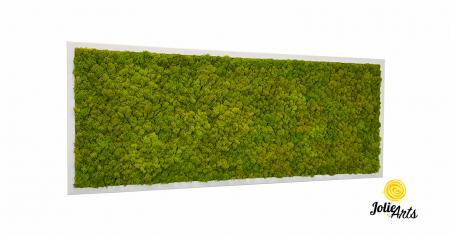 Verde Spring [0]